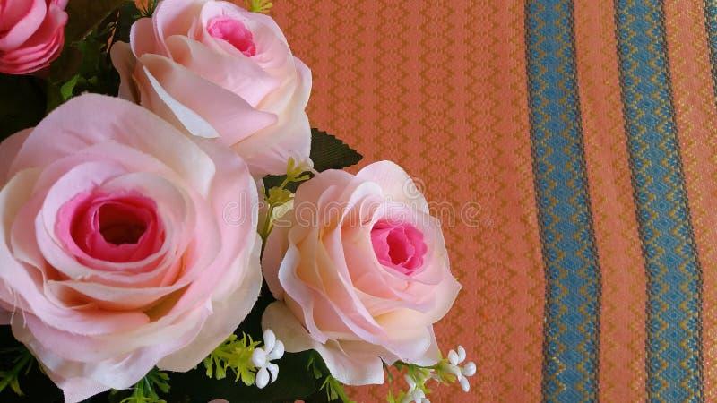 Den Rosa hybridadrottningen av blomman steg arkivfoton