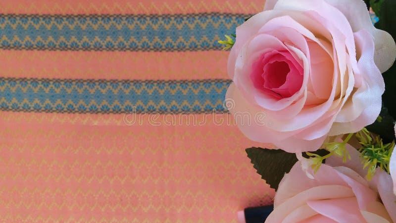 Den Rosa hybridadrottningen av blomman steg royaltyfria bilder