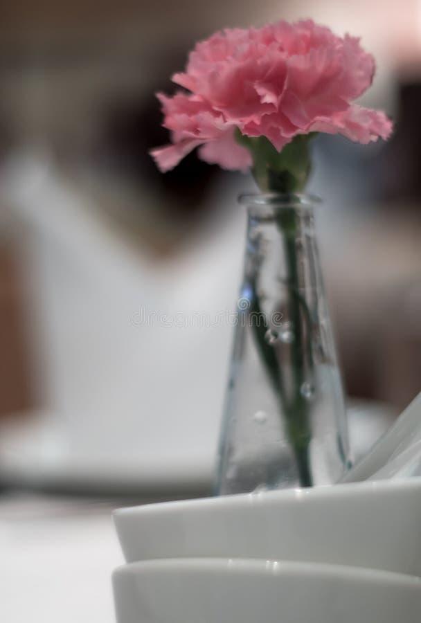 Den rosa nejlikan smyckade i tunna glass vaser som förlades på en äta middag ta royaltyfri bild