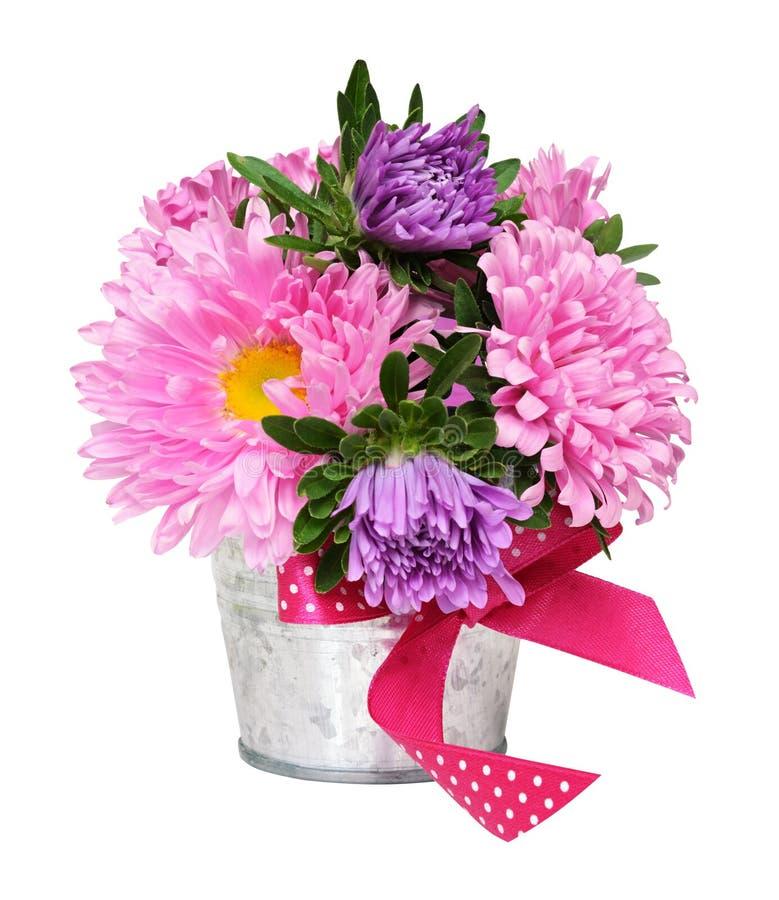 Den rosa och purpurfärgade aster blommar i en liten metallhink fotografering för bildbyråer
