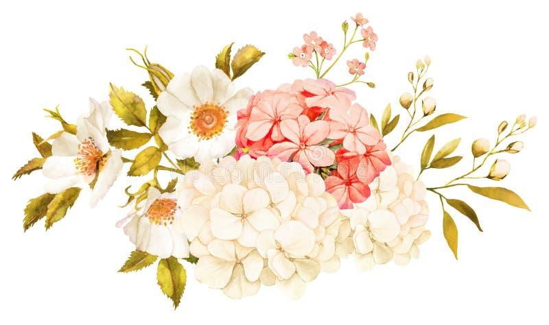 Den rosa vita jasmin, vanliga hortensian, steg blommor som gifta sig vattenfärgen royaltyfri illustrationer