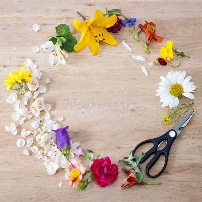 Den runda ramen som göras av olika blommor med blomsterhandlaren, scissors på träbakgrund arkivbild