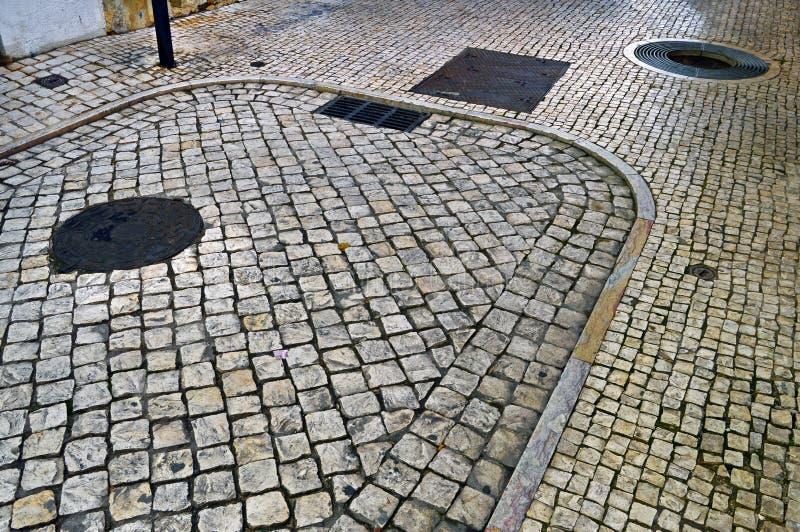 Den runda skyddsgallret som skyddar, rotar av trädet och fyrkanten och rouen royaltyfria bilder