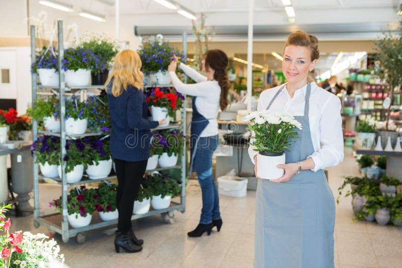 Den säkra blomsterhandlaren Holding Flower Pot shoppar in royaltyfri fotografi