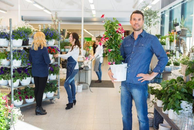 Den säkra växten för maninnehavblomman shoppar in arkivbilder
