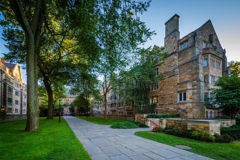 Den södra byggnaden av Berkeley College och en gångbana på Yale Uni royaltyfria foton