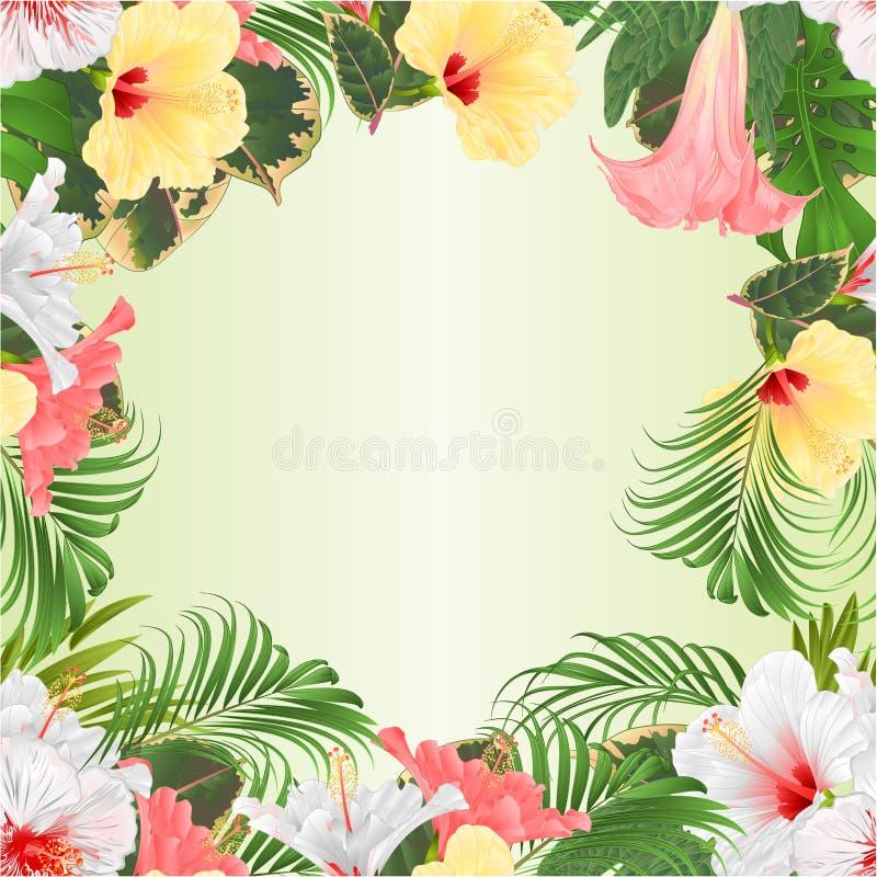 Den sömlösa gränsbuketten med gula för tropiska blommor den rosa röda och vita hibiskusen och Brugmansia och gömma i handflatan,  stock illustrationer