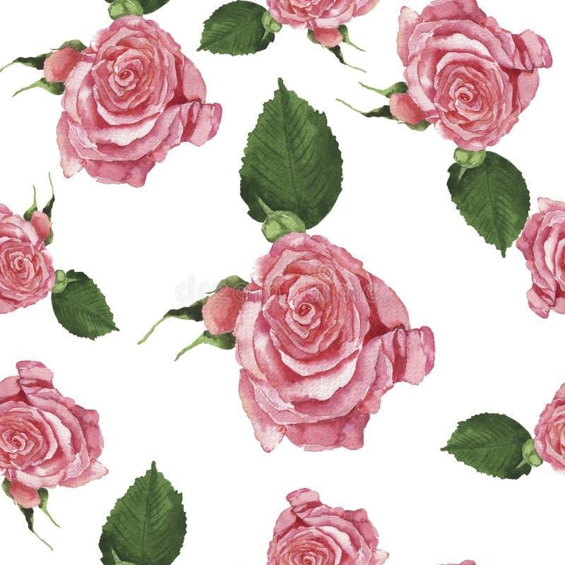 Den sömlösa modellen med anbud steg rosa blommor för flygillustration för näbb dekorativ bild dess paper stycksvalavattenfärg vektor illustrationer