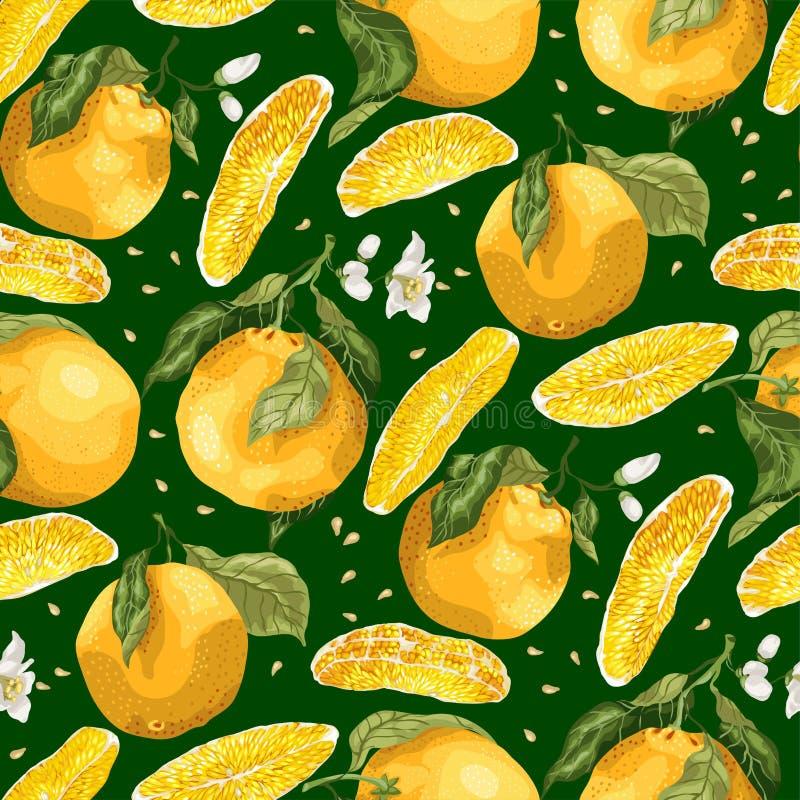 Den sömlösa modellen med apelsinen bär frukt och skivor med frö blodsugare vektor illustrationer