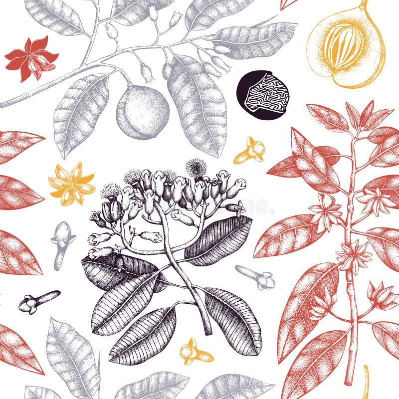 Den sömlösa modellen med den drog handen klöv trädet, vanilj, anisetreen, muskotnöt, kanel Tappningsidor, blommor, fruandfrö Abst stock illustrationer