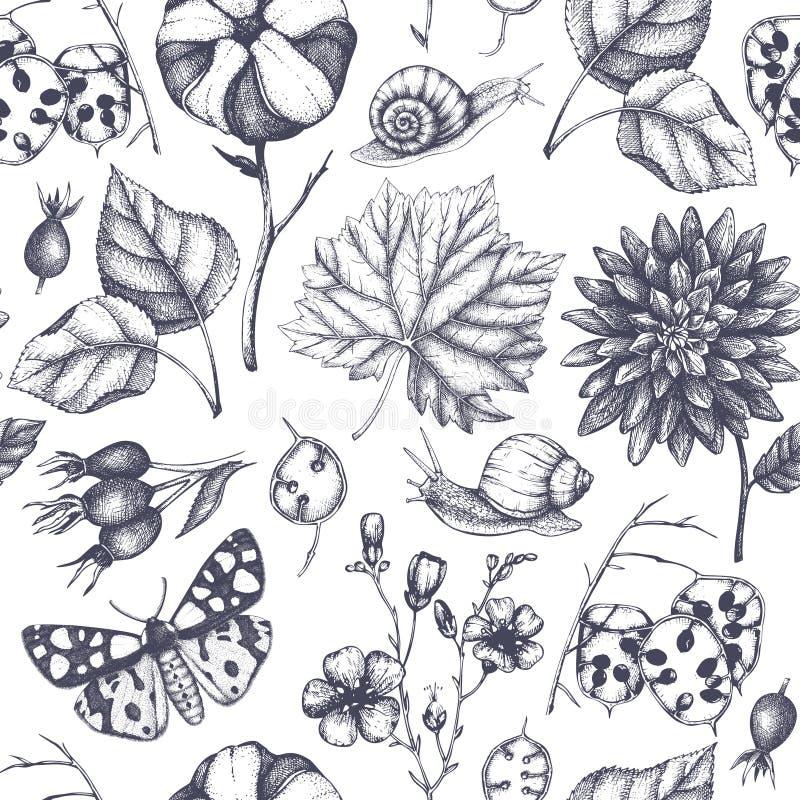 Den sömlösa modellen med sidor, blommor, kryp, sniglar och frö för hand utdragna skissar bland annat vektor för höstbakgrundseps  stock illustrationer