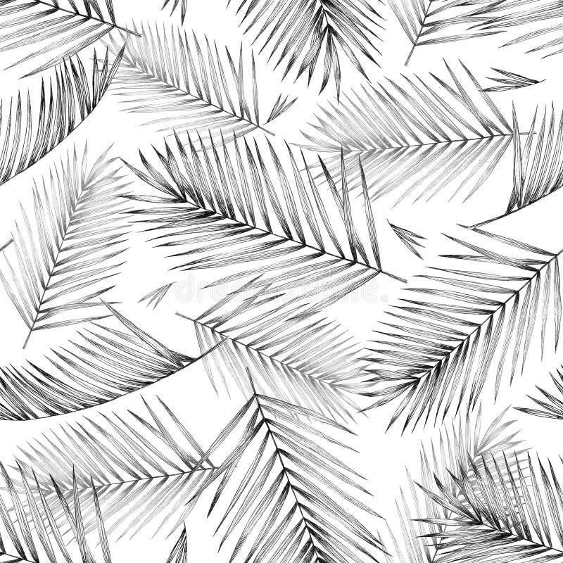 Den sömlösa modellen med tropiskt gömma i handflatan tjänstledigheter på vit bakgrund D vektor illustrationer