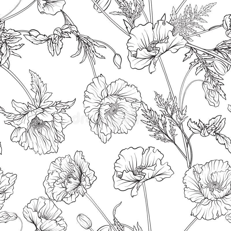 Den sömlösa modellen med vallmo blommar i botanisk tappningstil vektor illustrationer