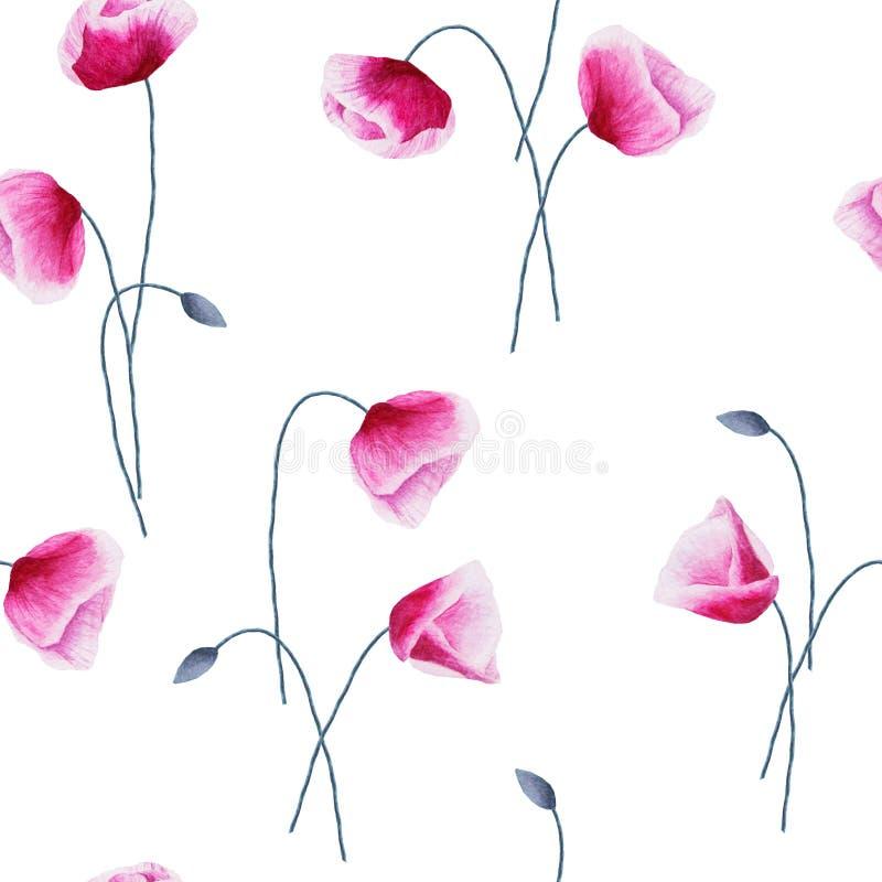 Den sömlösa modellen med vattenfärgvallmo blommar och slår ut på vit stock illustrationer
