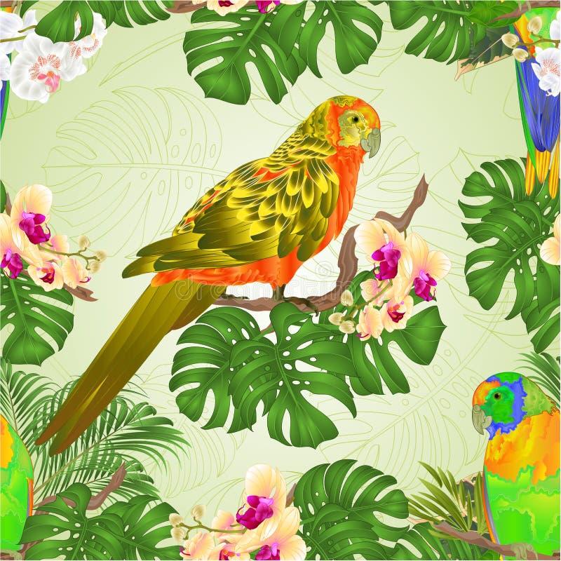 Den sömlösa textursolen Conure mekaniskt säga efter den tropiska exotiska tappningvektorn för fåglar med härlig guling och vitork stock illustrationer