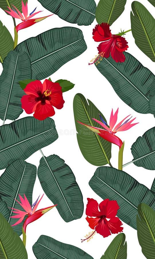 Den sömlösa vektormodellbananen lämnar med den röda hibiskusblomman och den rosa fågeln av paradiset royaltyfri illustrationer