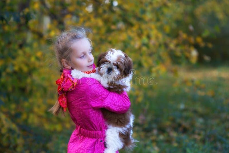 Den söta flickan rymmer en liten valp fotografering för bildbyråer