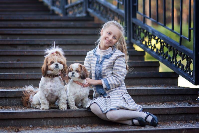 Den söta le flickan och två hundkapplöpning sket tsu En flicka går i sommaren med hundkapplöpning arkivbild