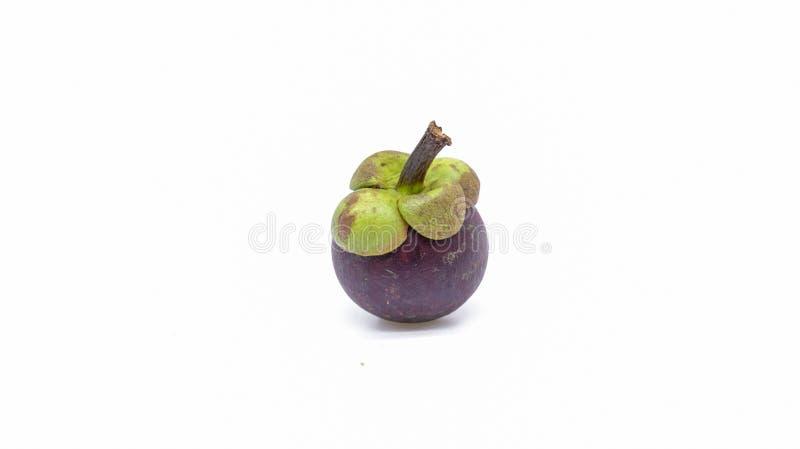 Den söta mangosteenen är drottningen av frukt fotografering för bildbyråer