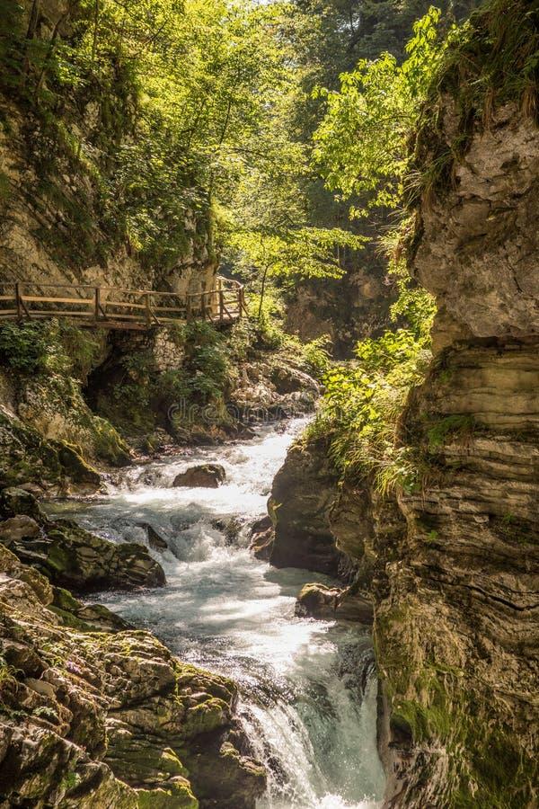 Den sagolika Vintgar klyftan i Slovenien nära den blödde sjön royaltyfria bilder
