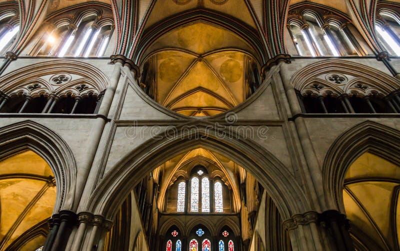 Den Salisbury domkyrkan välva sig i kor A royaltyfria bilder