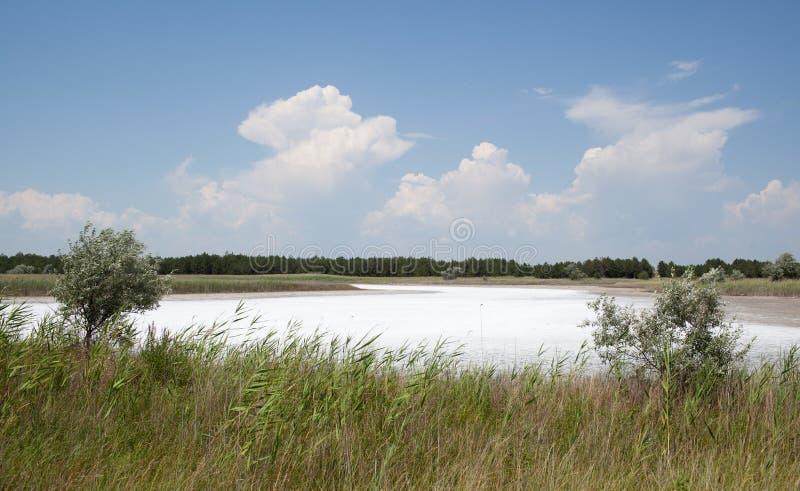 Den salthaltiga laken, Kinburn spottar, Ukraina arkivfoto