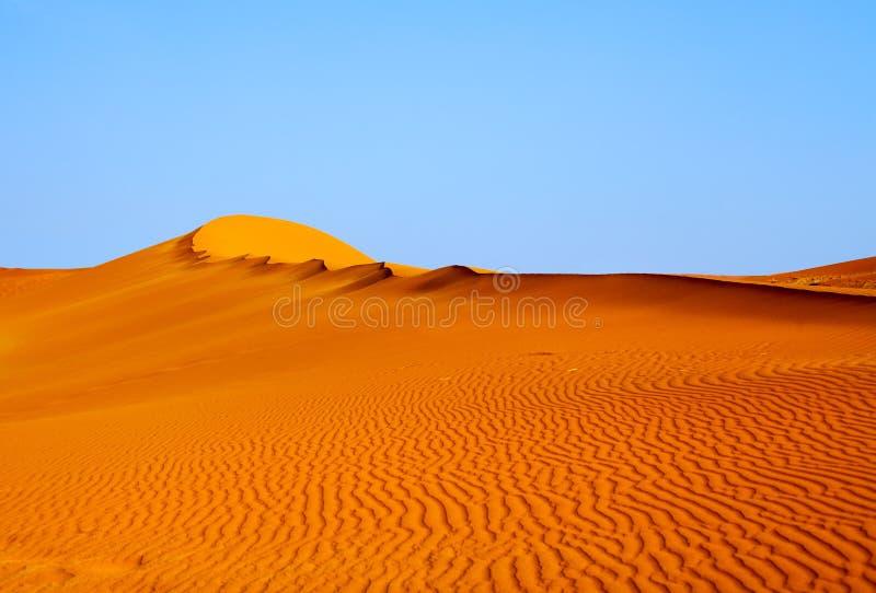Den sandiga orange dyn under blå klar himmel i den Namib öknen Naukluft parkerar Sossusvlei, Namibia, Sydafrika royaltyfria foton