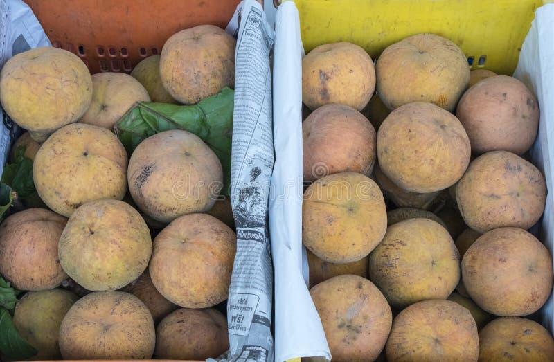 Den Sandoricum koetjapesantolen eller cottonfruit är en tropisk frukt som är fullvuxen i South East Asia arkivfoto