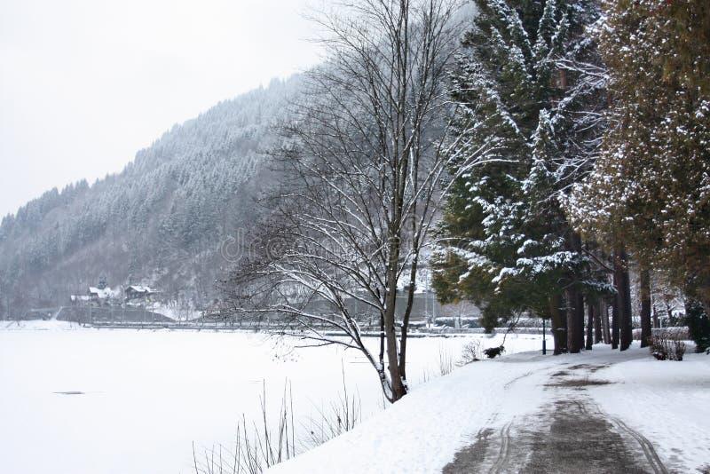 Den sceniska sikten av banan runt om laken, Zeller ser, Zell royaltyfri fotografi