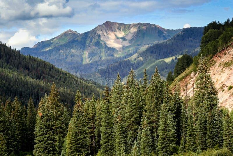 Den sceniska sk?nheten av Colorado Rocky Mountains Lizzard huvudvildmark royaltyfria bilder