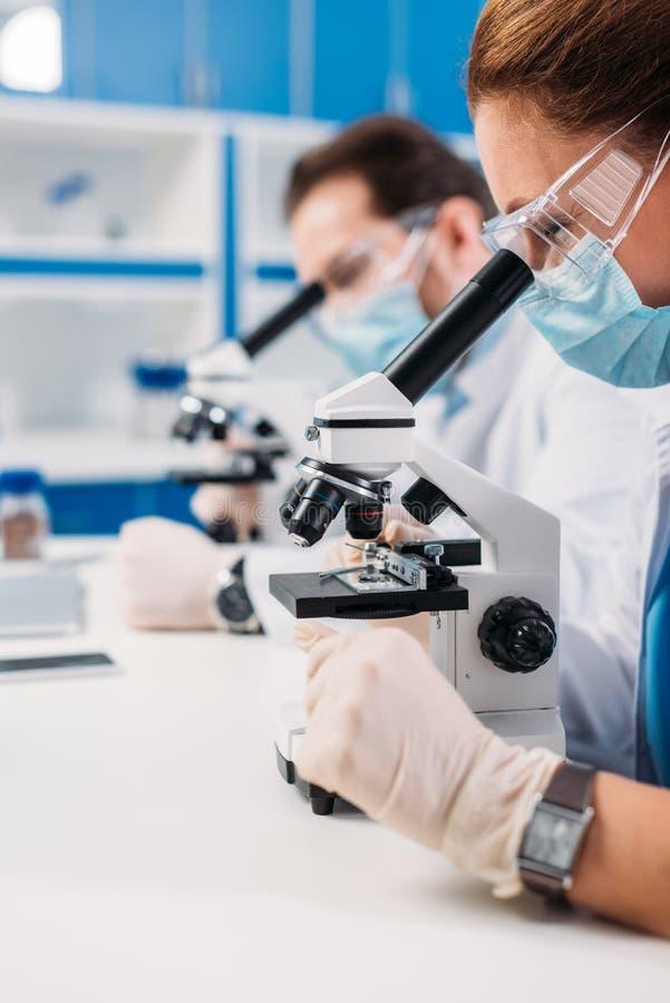 den selektiva fokusen av forskare i läkarundersökning maskerar och rullar med ögonen att se till och med mikroskop på regenter fotografering för bildbyråer