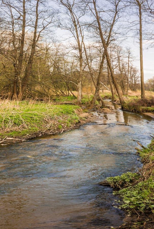 Den Serebryanka floden flödar till och med territoriet av Izmailovo parkerar Östligt område moscow Rysk federation arkivbild