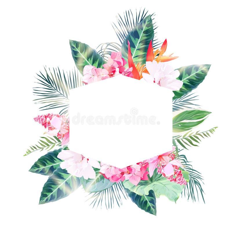 Den sexhörniga tropiska etikettramen som är ordnad från, gömma i handflatan och blommar royaltyfri illustrationer