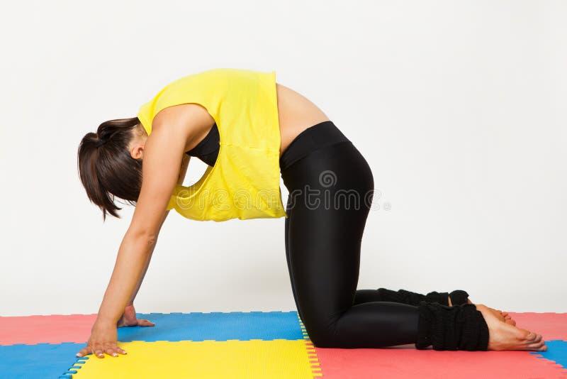 Den sexiga passformbrunettkvinnan i sportar bär i yoga poserar royaltyfria bilder