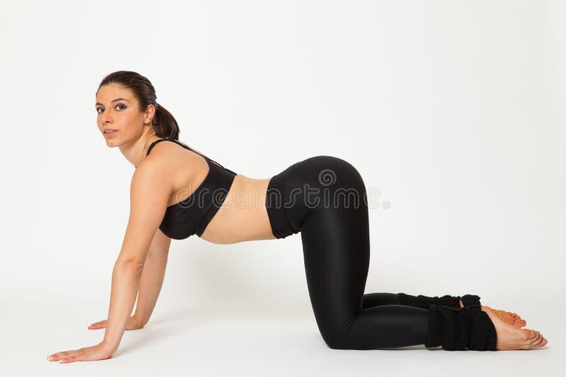 Den sexiga passformbrunettkvinnan i sportar bär i yoga poserar royaltyfri foto