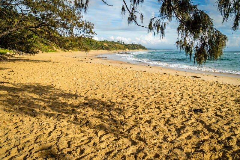 Den Shelly stranden i Nambucca Heads i Australien efter soluppgång royaltyfria foton