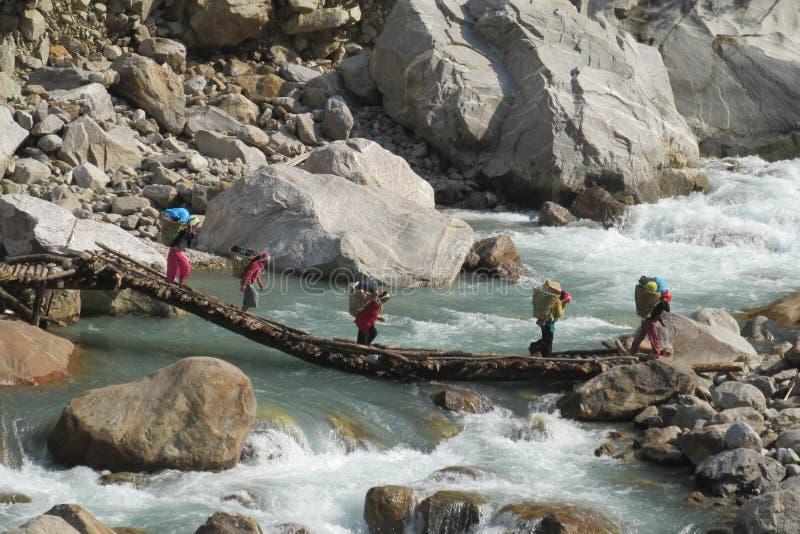Den Sherpa portvakten bär korgen i Nepal den trekking banan royaltyfria bilder