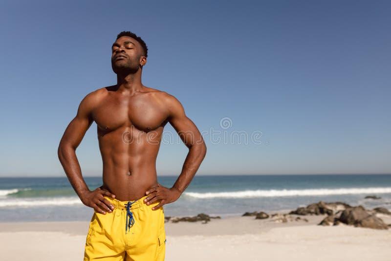 Den Shirtless mannen med händer på höft och ögon stängde att stå på stranden i solskenet royaltyfri bild