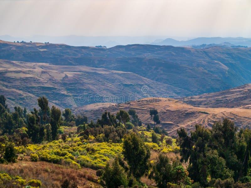 Den Simien bergnationalparken i nordliga Etiopien royaltyfria bilder