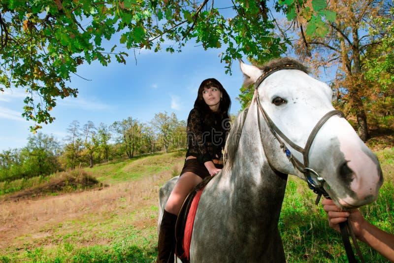 Den sinnliga flickan på hästen går på naturen arkivbilder