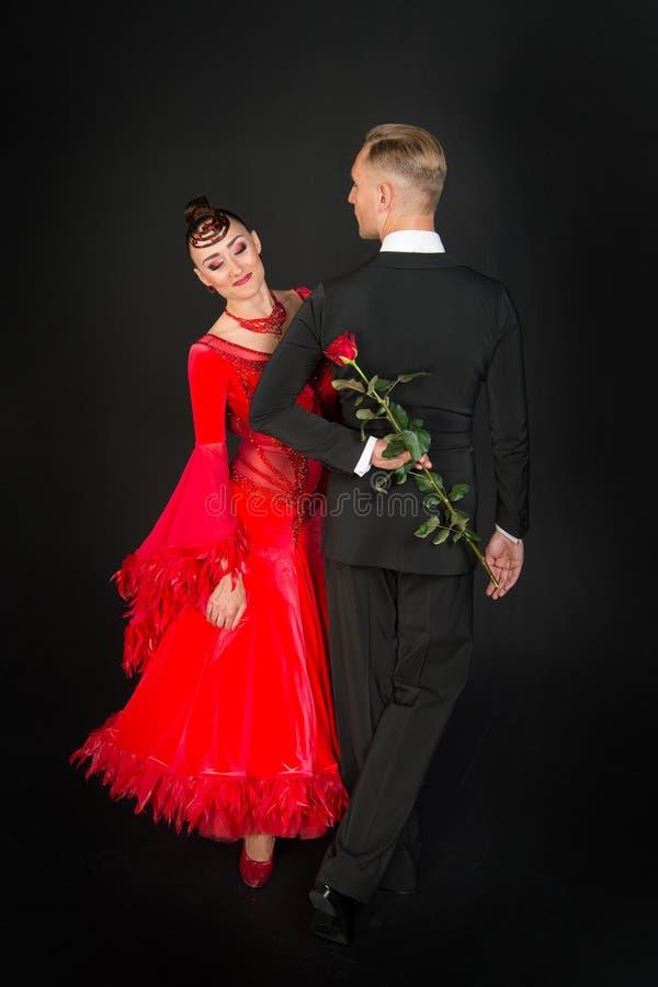 Den sinnliga kvinna- och mandansen med rosen blommar Kvinna i röd klänning och macho i smoking Par av förälskade balsaldansare va royaltyfria foton