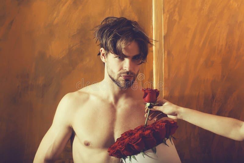 Den sk?ggiga muskul?sa mannen med den sexiga kroppen rymmer den r?da rosasken royaltyfri foto