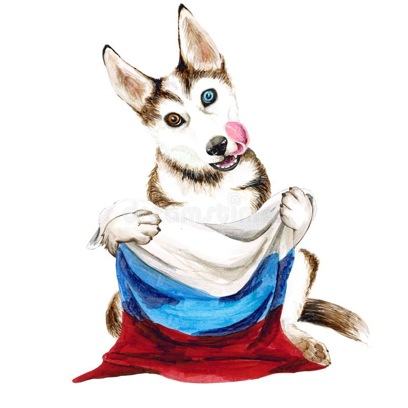 Den skrovliga hunden föder upp att rymma en Ryssland flagga Valp på vit bakgrund vektor illustrationer