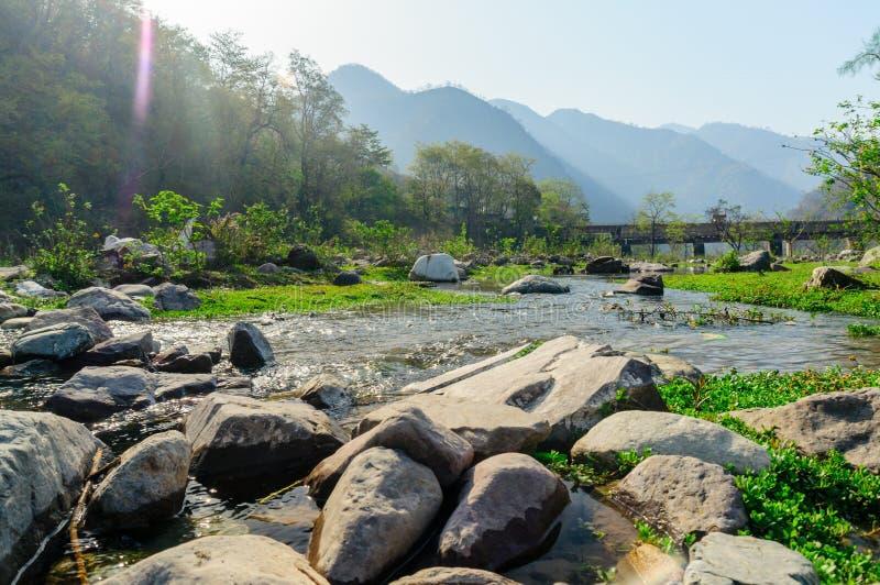 Den släta rundan vaggar på en flodstrand med gräs i bakgrunden fotografering för bildbyråer