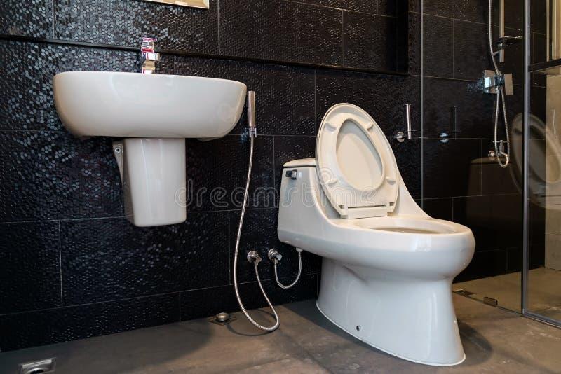 Den släta toaletten och handfatet gjorde av keramiskt arkivbild