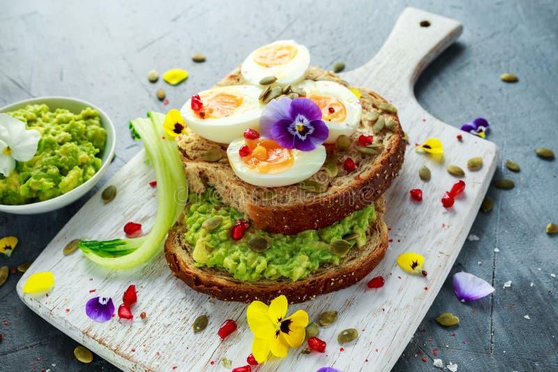 Den smakliga smörgåsen med avokadot kokade ägg, pumpa kärnar ur, och den ätliga altfiolen blommar i ett vitt bräde sund mat arkivfoto