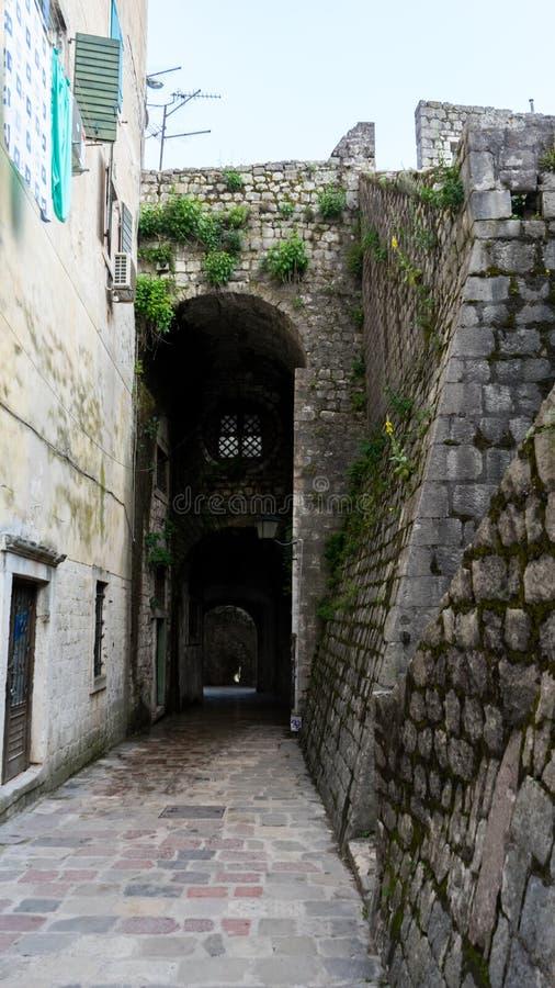 Den smala gatan av den autentiska gamla staden av Kotor, Montenegro E r royaltyfri fotografi