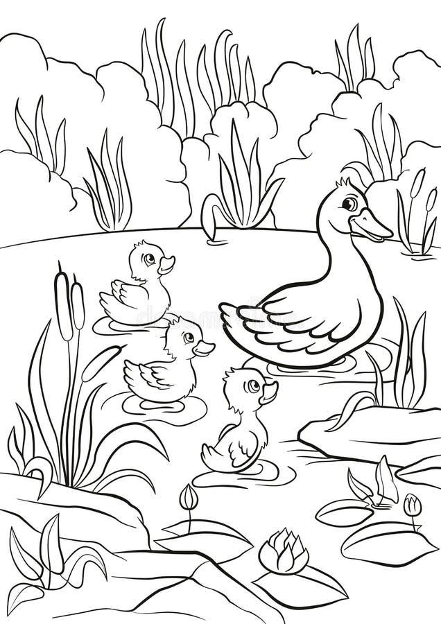 Den snälla anden och fria små gulliga ankungar simmar på sjön stock illustrationer