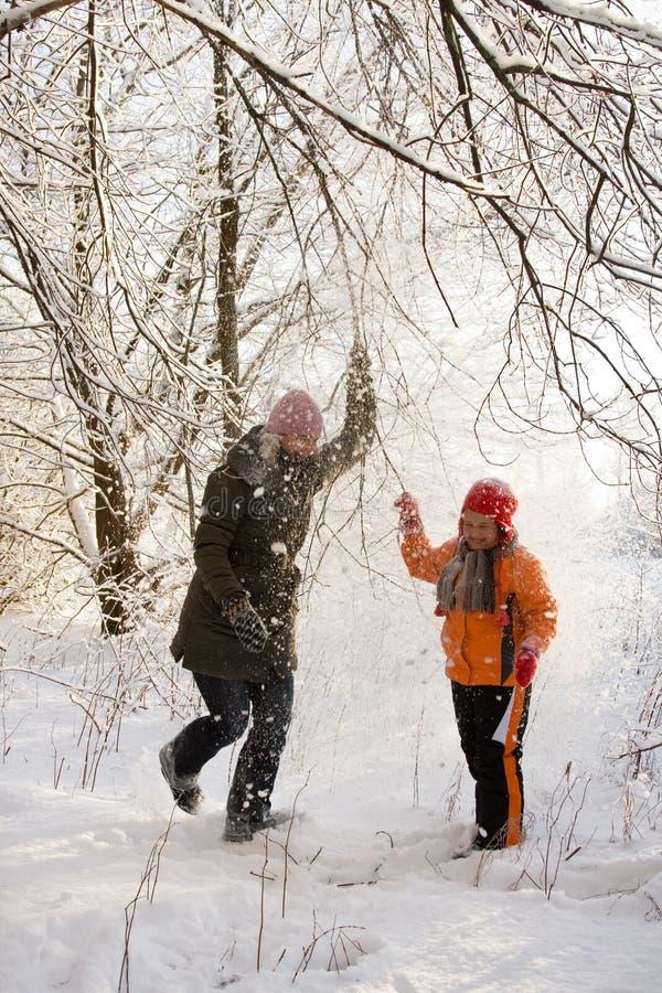den snöig skogen går royaltyfri fotografi