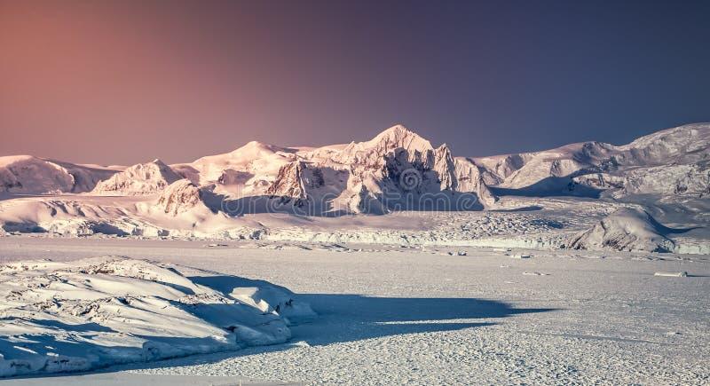 Den solbelysta snön täckte Antarktis land Solnedgång royaltyfri foto